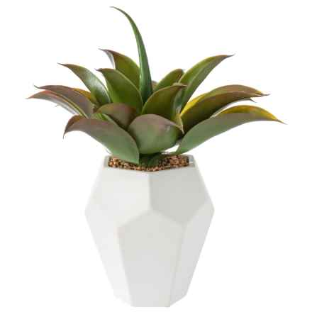 "Siena Floral Accents Succulent in Ceramic Pot - 15"" in See Photo - Closeouts"