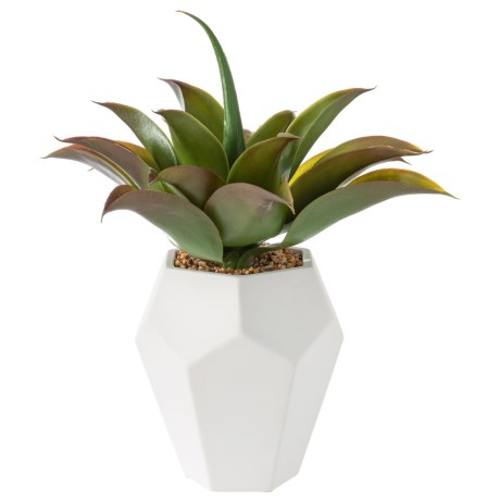 "Siena Floral Accents Succulent in Ceramic Pot - 15"" in See Photo"