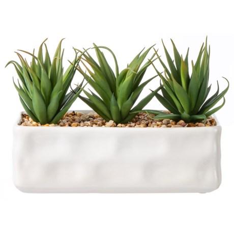 "Siena Floral Accents Succulent in Ceramic Pot - 7x10x4"" in White"