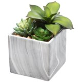 """Siena Floral Accents Succulent in Square Marble Pot - 8"""""""