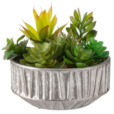 "Siena Floral Accents Succulents in Silver Ceramic Pot - 8"" in See Photo"