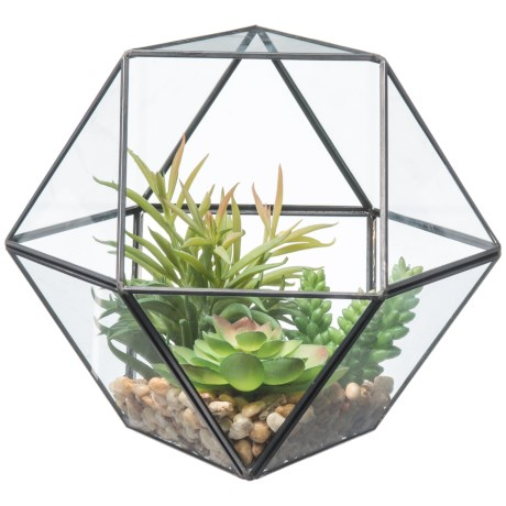Siena Floral Accents Succulents in Terrarium in See Photo