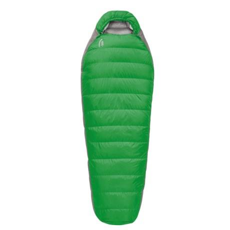 Sierra Designs 30° Zissou Plus 2-Season Sleeping Bag - 700 Fill Power in Green