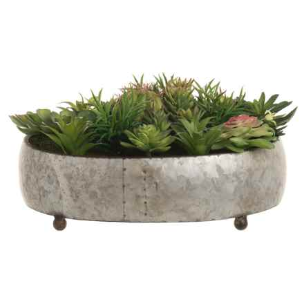 Silkcraft of Oregon Round Galvanized Metal Succulent Garden in Silver - Closeouts
