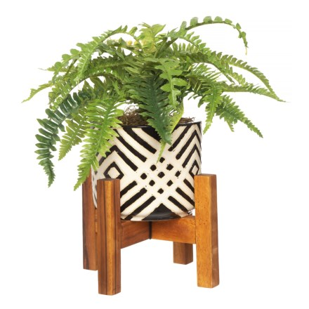 a4dc9d57 Silkcraft of Oregon Small Fern in Patterned Pot in Black/White - Closeouts