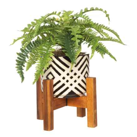 Silkcraft of Oregon Small Fern in Patterned Pot in Black/White - Closeouts