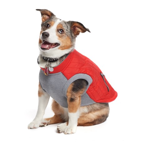 Silver Paw Easy Fit Dog Vest in Red