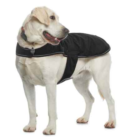 Silver Paw NW-1 Dog Jacket in Black - Closeouts