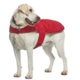 Silver Paw NW-1 Dog Jacket