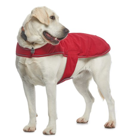 Silver Paw NW-1 Dog Jacket in Red