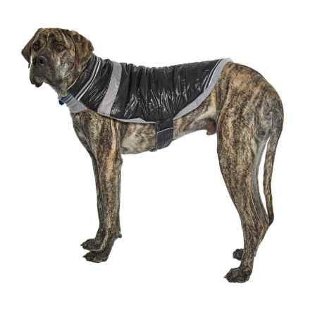 Silver Paw W-1 Dog Jacket in Black - Closeouts