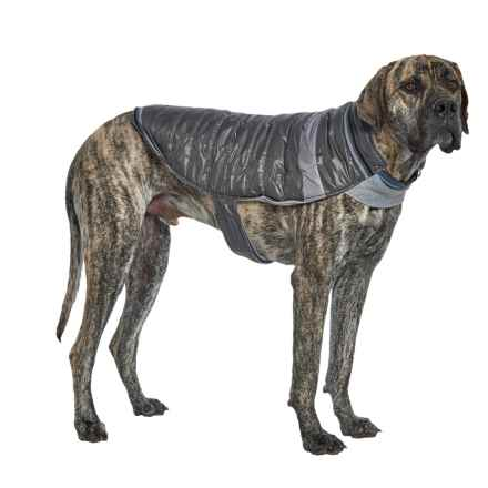 Silver Paw W-1 Dog Jacket in Charcoal - Closeouts