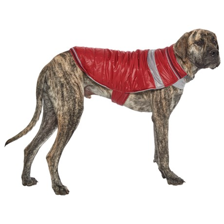 Silver Paw W-1 Dog Jacket in Red