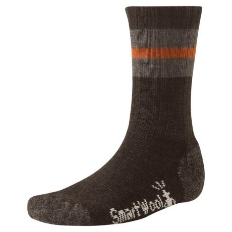 SmartWool Barn Socks - Merino Wool (For Men) in Chestnut Heather