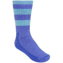 SmartWool Hike Stripe Socks - Merino Wool, Crew (For Kids) in Purple/Mineral - 2nds