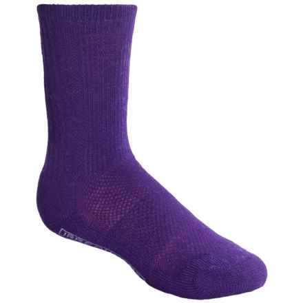 SmartWool Hike Ultralight Socks - Merino Wool, Crew (For Kids) in Grape - 2nds