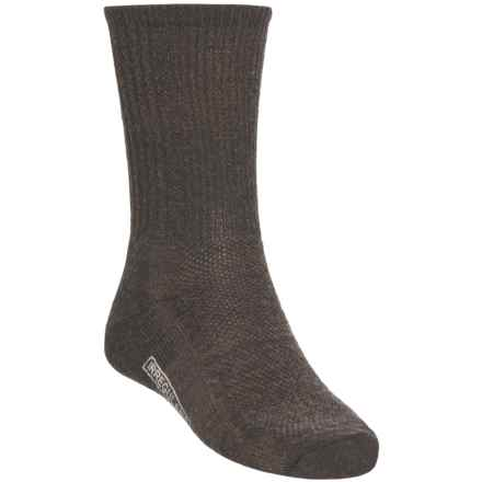 SmartWool Hiking Socks - Merino Wool, Crew (For Men and Women) in Chestnut - 2nds