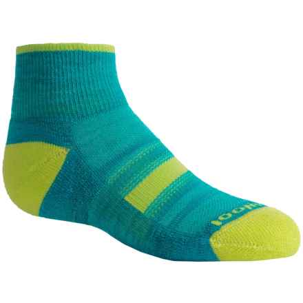 SmartWool Sport Mini Socks - Merino Wool, Crew (For Little and Big Kids) in Capri - Closeouts