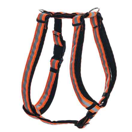 Spiffy Dog Air Dog Harness - Large in Black Orange Reflective - Closeouts