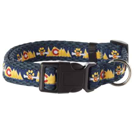 Spiffy Dog Colorado Air Dog Collar in Blue - Closeouts