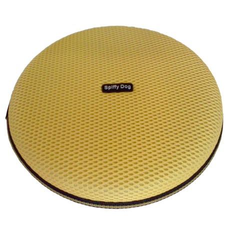 Spiffy Dog Dog Disc in Yellow