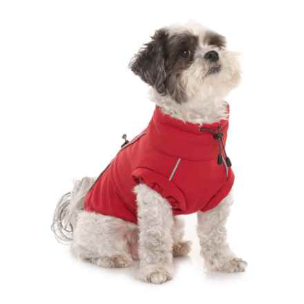 Spot On Dog Red Adventure Dog Coat - Small in Red - Closeouts