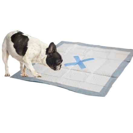 Spot X Marks The Spot Dog Training Pads - 50-Pack in See Photo - Closeouts