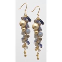 Stanley Creations Multi-Cluster Earrings in Gold W/Iolite