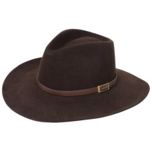 Stetson Solid Fur Felt Cowboy Hat (For Men and Women) in Dark Brown - 2nds