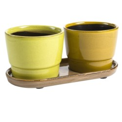 Tag Blythe Glazed Garden Pots and Tray Set in Multi