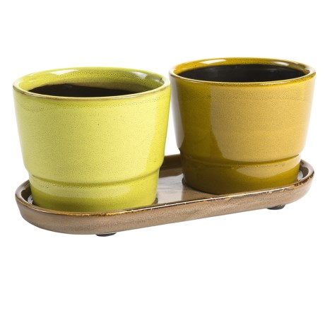 Tag Blythe Glazed Garden Pots and Tray Set in Multi