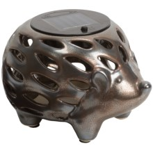 Tag Solar Lantern in Hedgehog - Closeouts