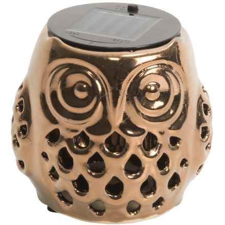 Tag Solar Lantern in Owl - Closeouts