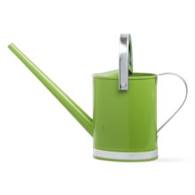 Tag The Perfect Watering Can in Green - Closeouts