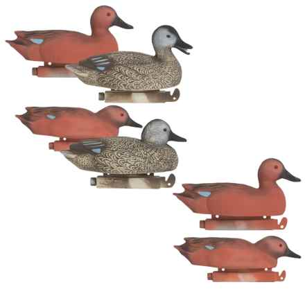 Tanglefree Pro Series Cinnamon Teal Floater Decoy Set - 4 Drakes, 2 Hens in See Photo - Closeouts