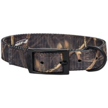 Team Realtree Camo Dog Collar in Max4 - Closeouts
