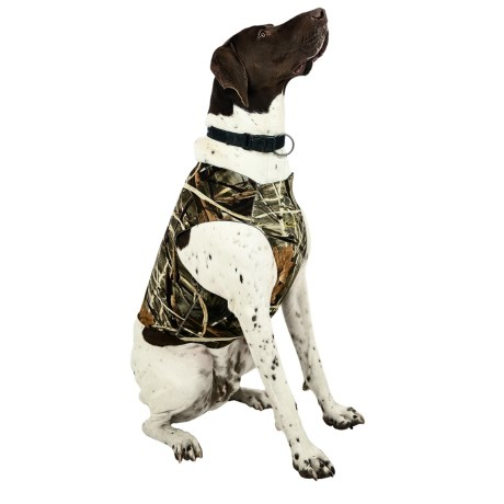 Team Realtree Dog Chest Protector in Max4