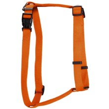 Team Realtree Dog Harness in Blaze Orange - Closeouts