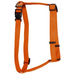 Team Realtree Dog Harness in Blaze Orange