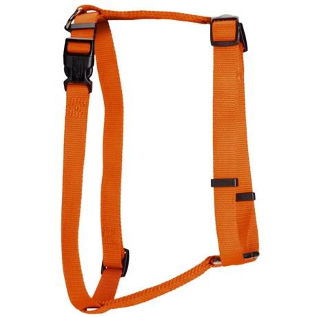 Team Realtree Dog Harness in Blaze Orange