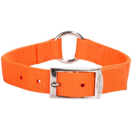 Team Realtree O-Ring Dog Collar in Blaze Orange