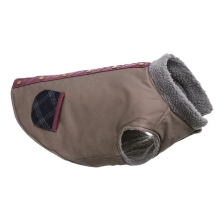 Telluride Orville Dog Jacket in Maroon