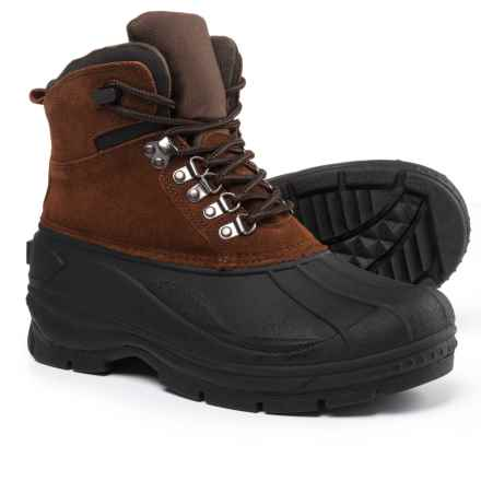 Telluride Peak Winter Boots - Waterproof, Insulated (For Men) in Brown - Closeouts