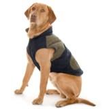 Telluride Richard Dog Jacket