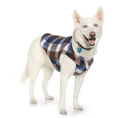 Telluride Walter Dog Jacket in Blue Plaid