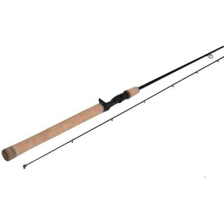 Temple Fork Outfitters TFG Salmon/Steelhead Casting Rod - 2-Piece in See Photo - Closeouts