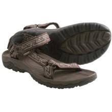 Teva Hurricane XLT Sport Sandals (For Men) in Aztec Chocolate Brown - Closeouts