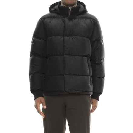 The North Face Bedford Down Hooded Bomber Jacket - 550 Fill Power (For Men) in Tnf Black - Closeouts