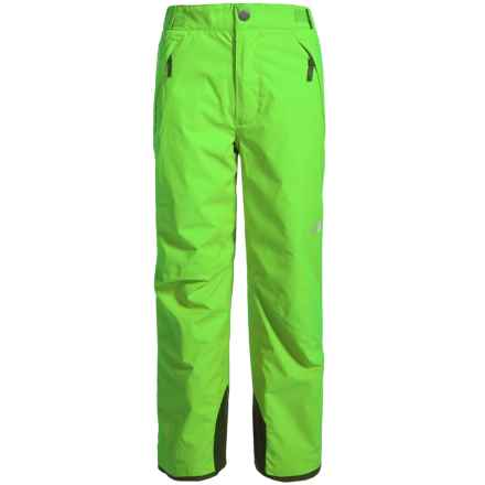 The North Face Freedom Pants - Waterproof, Insulated (For Little and Big Boys) in Safety Green - Closeouts