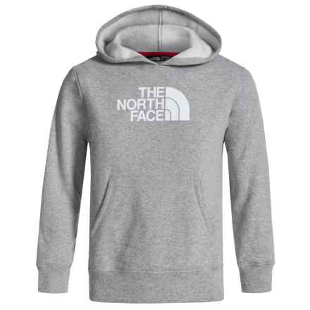 The North Face Logowear Hoodie (For Little and Big Boys) in Tnf Light Grey Heather - Closeouts